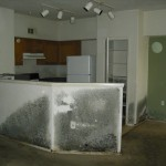 Mold Property Team Carver (6)