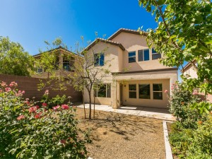 Madeira Canyon 2632 Courgette Way 4